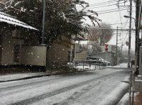☆雪ですが!☆