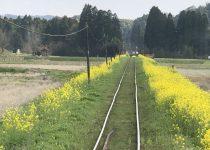 いすみ鉄道ムーミン列車
