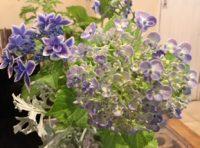 本店にも紫陽花の花